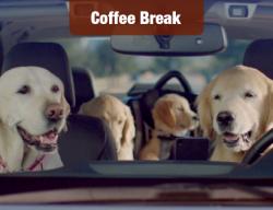 Subaru Brings Back Its Dog Family