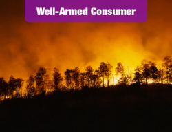 3 Key Claims-Filing Tips to U.S.'s Wildfire Victims, from Triple-I