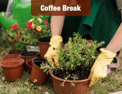 How to Maintain Your Coronavirus Garden Over the Winter