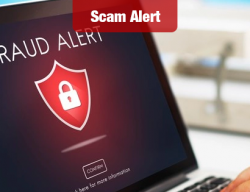 Online Purchase Scams Up; BBB Warns Holiday Shopping Is At Risk